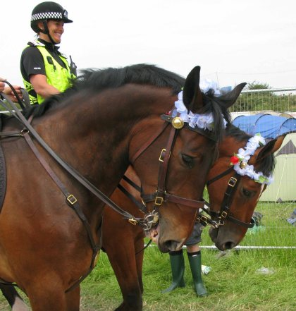 Even the Glastonbury police horses are cool.