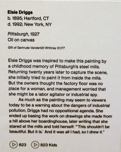 elsie driggs description